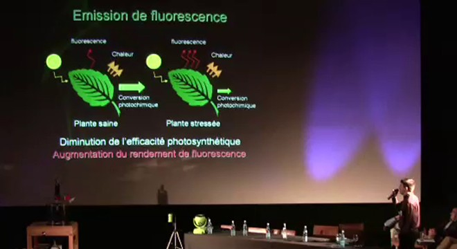 strasbourg_MA2_ufo-science660